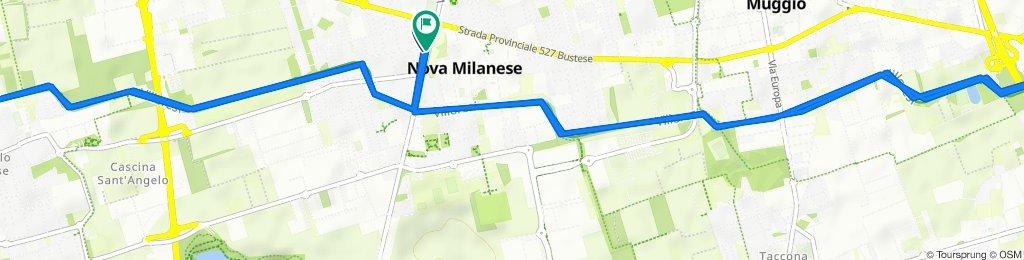 Da Via Luigi Cadorna 1, Nova Milanese a Via Giuseppe Garibaldi 32, Nova Milanese