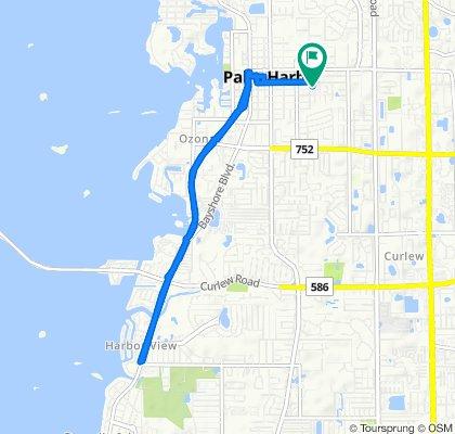 969 16th Ln, Palm Harbor to 947 16th Ln, Palm Harbor