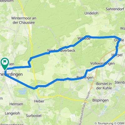 D - Schneverdingen - Durch die Heide - 42 km