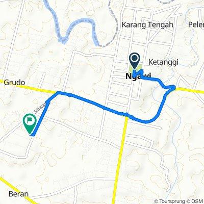 Jalan Merdeka, Kecamatan Ngawi to Padas, Kecamatan Ngawi