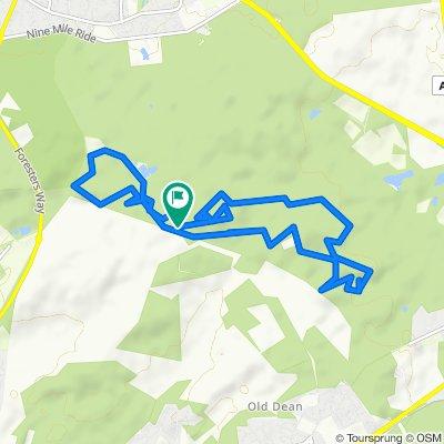Swinley Forest Blue Mountain Bike Trail to Swinley Forest Blue Mountain Bike Trail