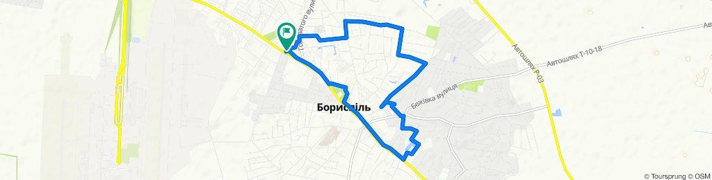 От Киевский Шлях улица, 39, Борисполь до Киевский Шлях улица, 39, Борисполь
