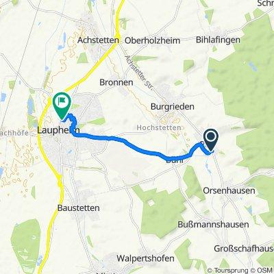L259 36, Burgrieden nach Eisenbahnstraße 1, Laupheim