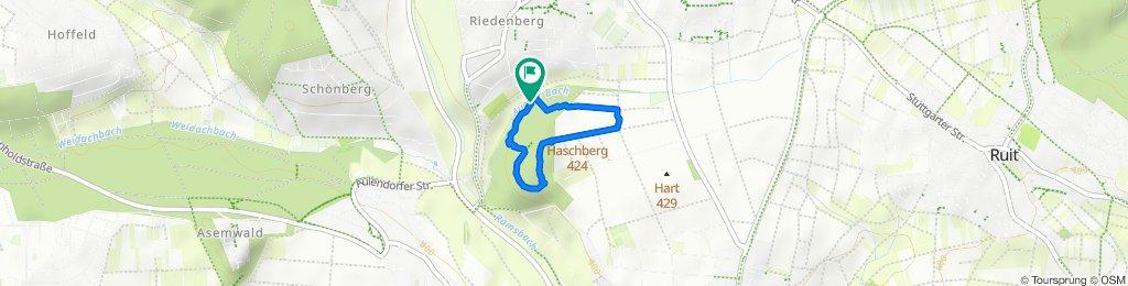 Haschberg