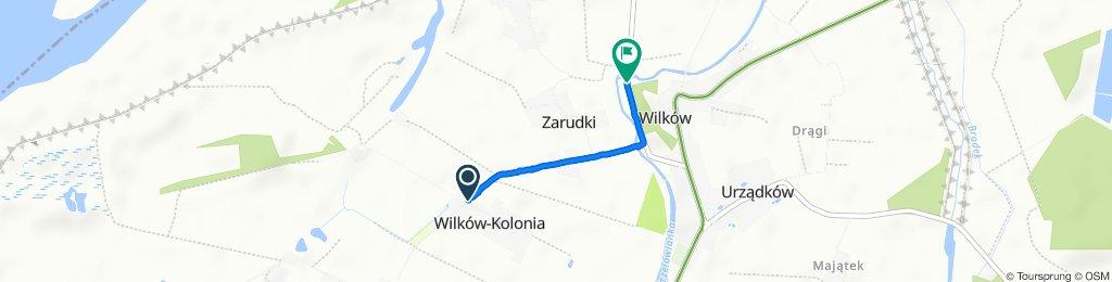Wilków-Kolonia do 29A, Zarudki