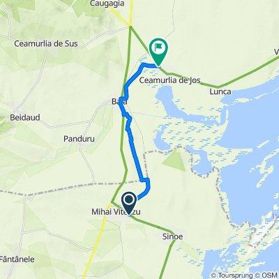 Alternative to avoid the heavy traffic on DN22 if you do EuroVelo 6 (last 4km to Mihai Viteazu unpaved)