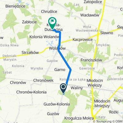 Trasa do Kowala-Duszocina 31, Wolanów