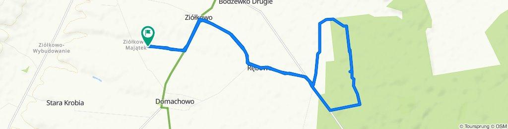 Wycieczka do Lasu(leśnictwo Siedlec -Rębowo-Bodzewko).