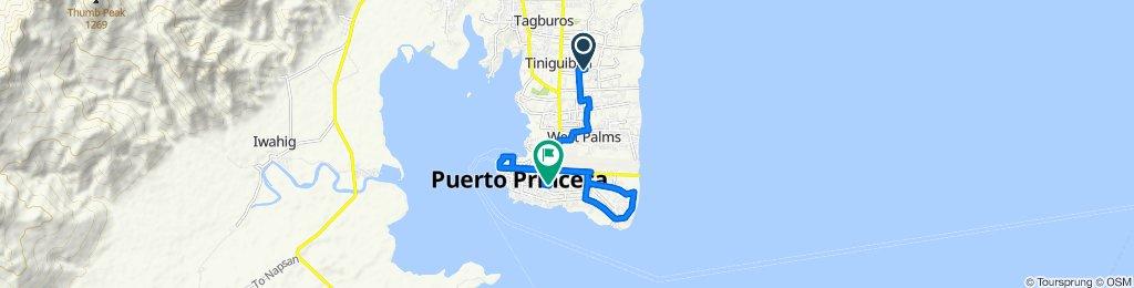 Route to Manalo Street, Puerto Princesa City