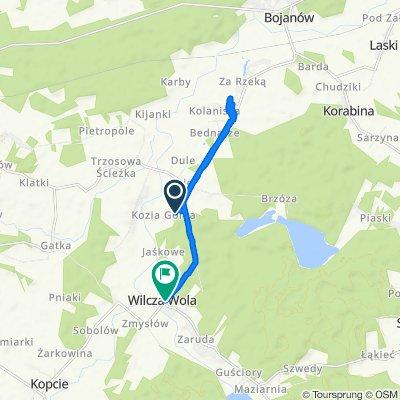 Wilcza Wola, Dzikowiec do Wilcza Wola 229, Wilcza Wola