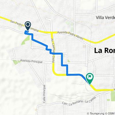 De La Romana a Avenida Francisco Alberto Caamaño Deño, La Romana