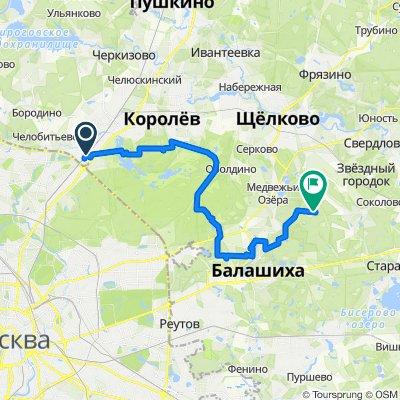 От платформа Перловская, Мытищи до Unnamed Road