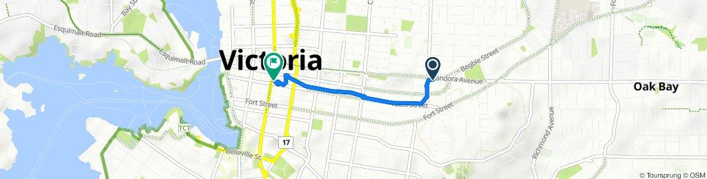 Pandora Avenue 111-1345, Victoria to Douglas Street 80821, Victoria