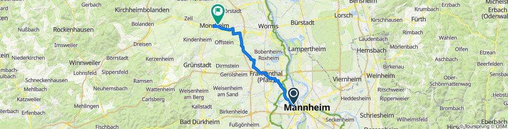 Tour Ludwigshafen - Monsheim