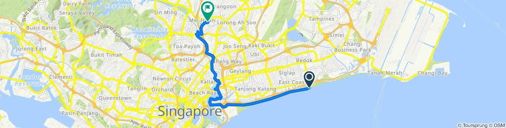 1216 East Coast Parkway, Singapore to 244 Lorong Chuan, Serangoon