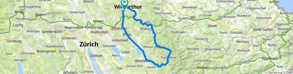Dammstrasse 23, Winterthur nach Eichliackerstrasse 33, Winterthur