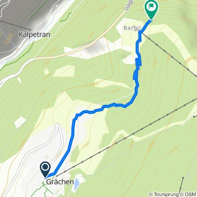 Route for On for the Grächen Berglauf!