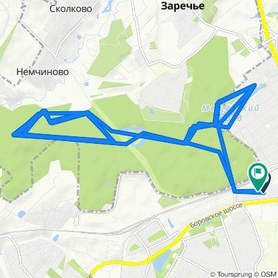 От Боровское шоссе, 2к7, Москва до Боровское шоссе, вл2к2/2, Москва