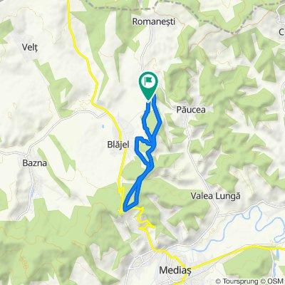 Movilele Blajelului 12 km