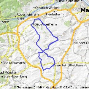 006f Ingelheim - Ober Hilbersheim - Wörrstadt - Wallertheim -Stadecken Elsheim -Ingelheim