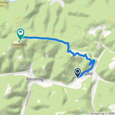 Staffel-Steinerberg-5,4km