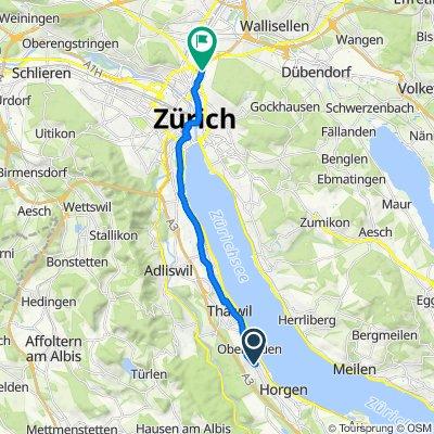 Bleierstrasse 14, Oberrieden nach Winterthurerstrasse 170, Zürich