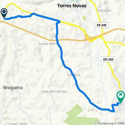 De Rua José Maria Pereira da Rosa 19, Torres Novas a Rua Raposa 45, Riachos