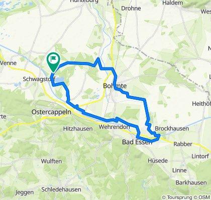 Schloss Hünnefeld - Venne: 41km