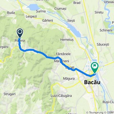 Route to Strada Banu Mărăcine 35–69, Bacău