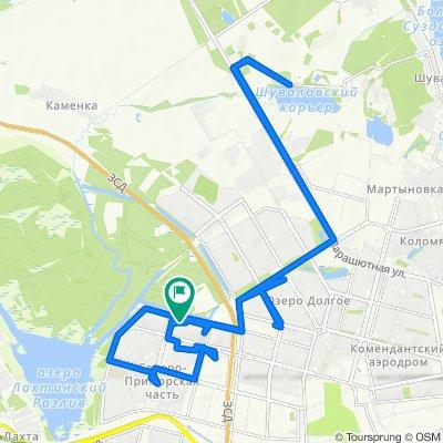 От Камышовая улица, 42к1, Санкт-Петербург до Туристская улица, 35к2литБ, Санкт-Петербург