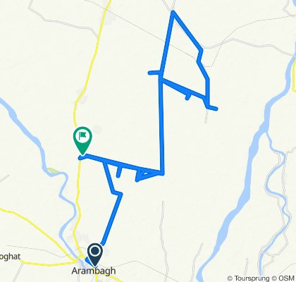 Axis Bank, Arambag to Bulchand - Painta Road, Bulchandrapur