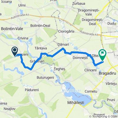DJ412C 1038, Ogrezeni to Strada Casa Noua, Olteni