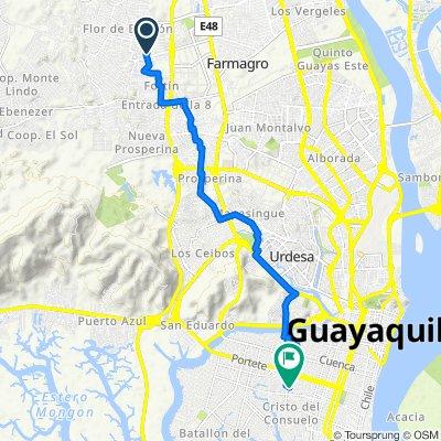 De Flor de bastión 21, Guayaquil a Avenida 19 South 2519, Guayaquil