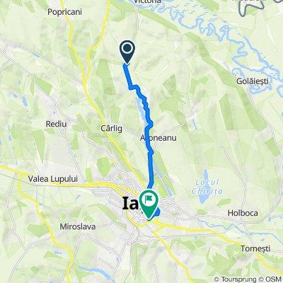 Unnamed Road to Bulevardul Primăverii 15, Iași