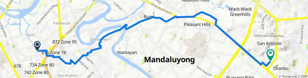 Perdigon 1313, Manila to Pasig