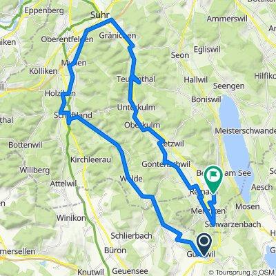 Wigerimatte 10–14, Gunzwil nach Sonnenbergstrasse 35, Reinach AG