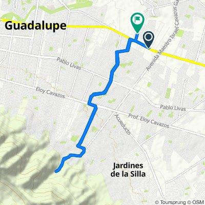 De Del Federalismo 22, Guadalupe a Río de Guatemala 102, Guadalupe
