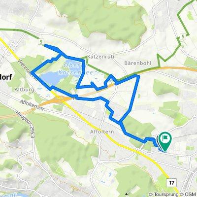 Binderweg 20, Zürich nach Zelghalde 32, Zürich
