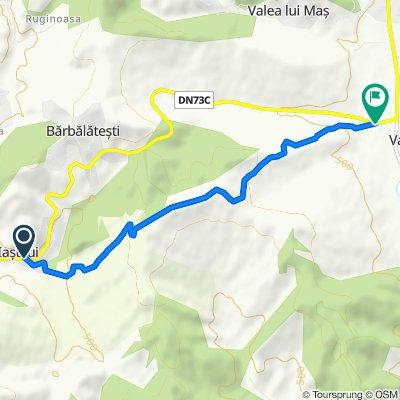 24 Valea Iașului ( Nuculet) - Musatesti ( Valea Faurului)