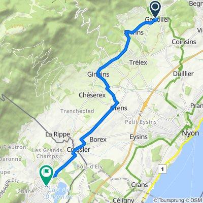 De Route de la Cézille 1, Genolier à Grande Rue, Divonne-les-Bains