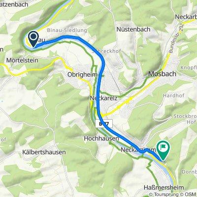 B37, Binau nach Burg Hornberg 3, Neckarzimmern