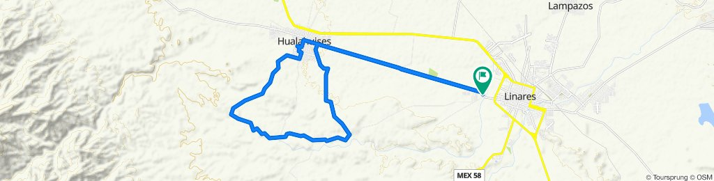 De Calle Lirio, Linares a Calle Antigüo Camino a Hualahuises, Linares