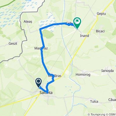 Traseu 8 - Salonta - Martihaz - Parcul Natural Cefa - Cefa Gara