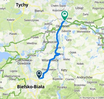 Wyzwolenia 334, Bielsko-Biała do Hutnicza 2b, Broszkowice