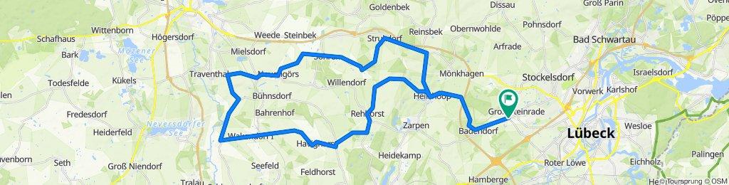 Kreisel Badendorf über Sühlen und zurück