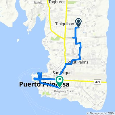 Route to Manalo Street, Puerto Princesa City