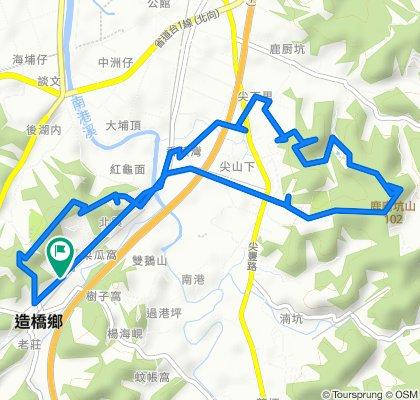 MTB-口山步道-鹿廚坑山-楓香林-老崎古道