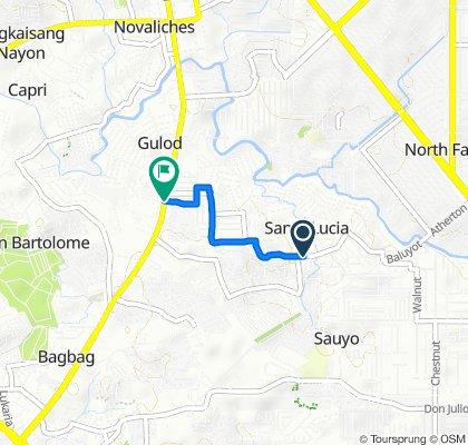 J. P. Rizal 100, Quezon City to Quirino Highway 778, Quezon City