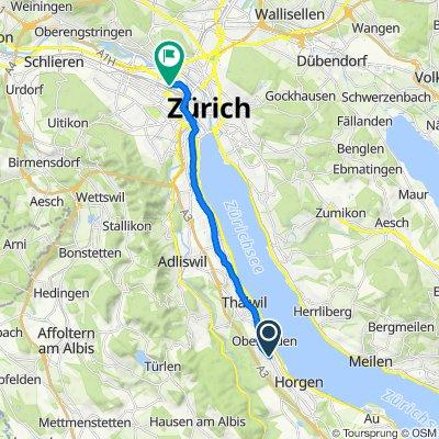 Bleierstrasse 17, Oberrieden nach Hardstrasse 201, Zürich