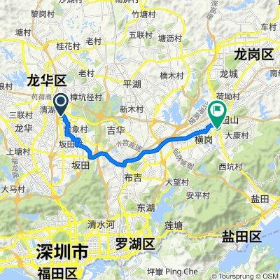 G94 Zhusanjiao Ring Expressway, Shenzhen to Hantang 3rd Road, Shenzhen